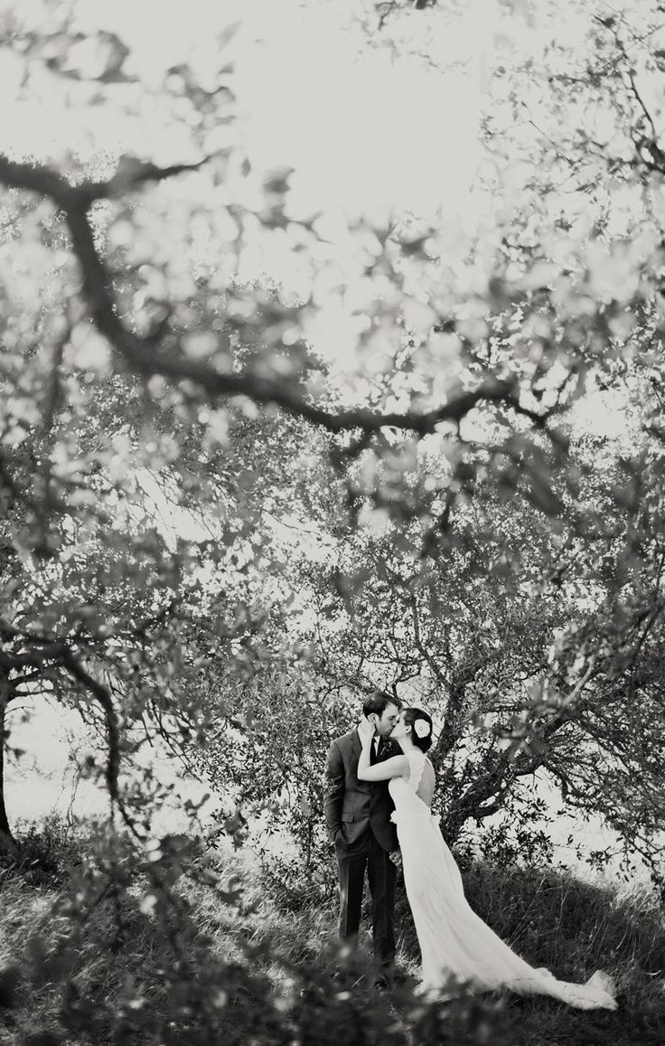 Wedding decorations tent october 2018  best July   uc images on Pinterest  Wedding ideas Dream
