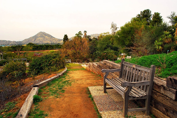 Botanic Garden, UC Riverside, California, United States
