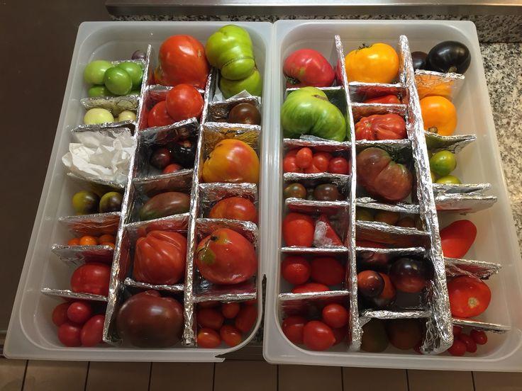 Many varieties of tomato. #tomato #chef #grandhotel #villafeltrinelli #dish #lakegarda #colors
