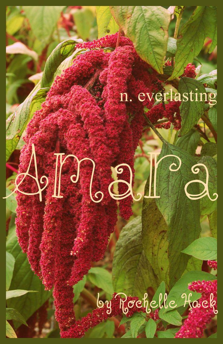 Baby Girl Name: Amara. Meaning: Everlasting. Origin: Latin. https://www.pinterest.com/vintagedaydream/baby-names/