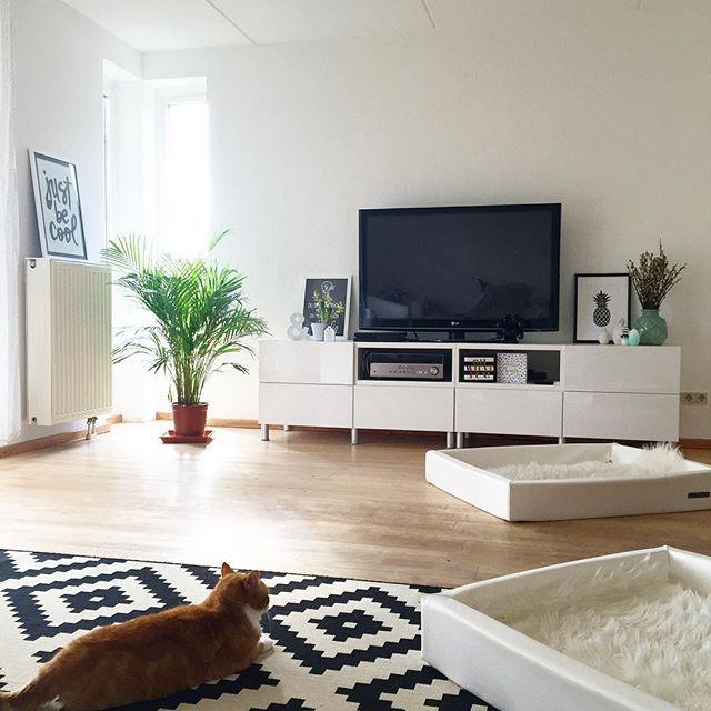 Sodala hab mal meinen faulen Hintern bewegt und das Wohnzimmer umgestellt 😅💪🏻 das Sofa in der Mitte war blöd , die Hunde haben auf dem Weg in den Garten immer alles umgehaun... Jetzt ist der Fernseher wieder 4m vom Sofa entfernt, aber er wird eh nur zum Playstation zocken benutzt !!!! Jetzt muss ich mal endlich überlegen, was ich noch an Möbeln kaufe 🙆🏻 #faulenzer #interior #myhome #wohnzimmer #wohnkonfetti
