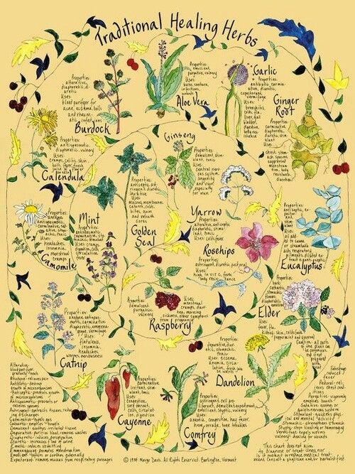 Healing Herbs I used to have this poster! Should have framed it so it would still be in my life!