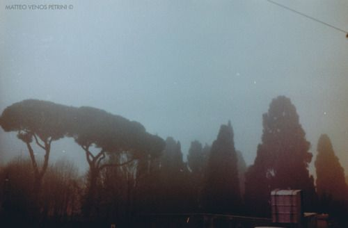 """Rome's Cemetery in the mist""  From car window - 35 mm film  Matteo Venos Petrini ©"