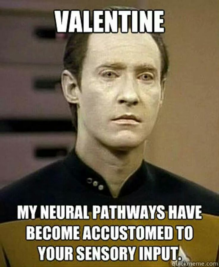 That's actually how Data described his realization that he has friends - Star Trek TNG - St. Valentine's Day card