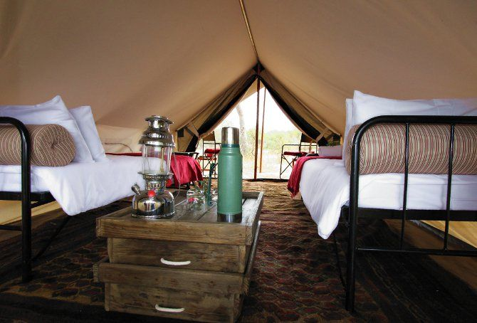 Fancy spending three nights in the African bush with me?