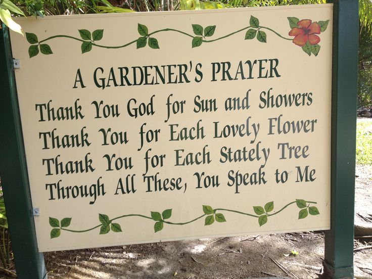 More gardening quotes to inspire! http://www.tomatodirt.com/gardening-quotes.html