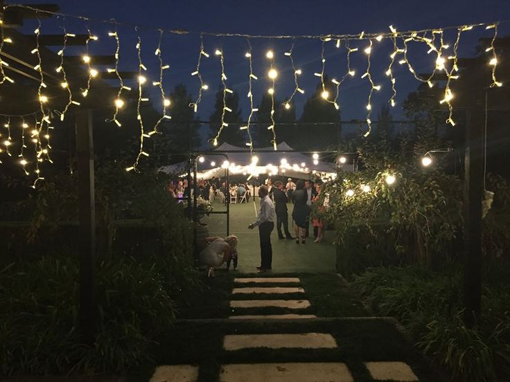 Fairy-lights and festoons under our canopy rigged on a tennis-court