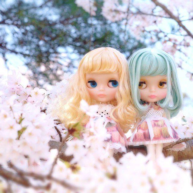満開の桜でした…♡ #ブライス  #blythe #ミスサリーライス #ペニープレシャス #AtelierMYR #アトリエマイアール