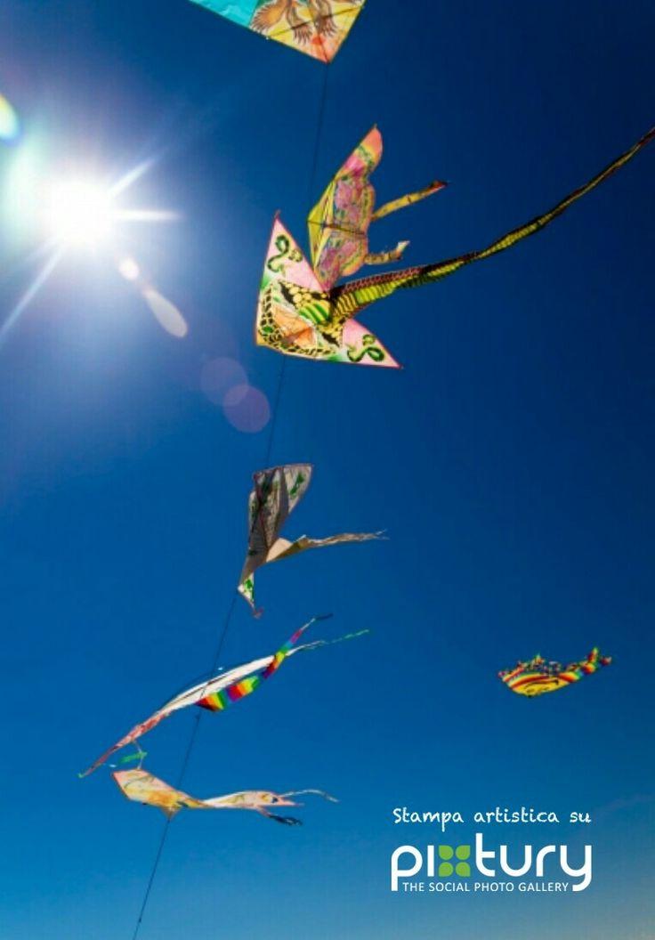 Art print - Aquiloni al vento  M. M. Messina