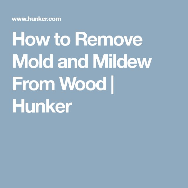 how to clean mold and mildew from wood
