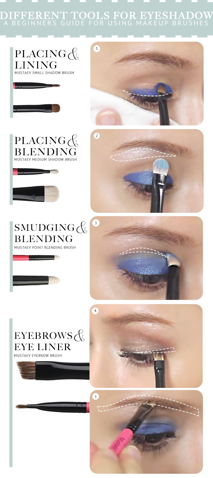 A Beginners Guide On How To Apply Eyeshadow Beginner Makeup Brushes And  Tips For How