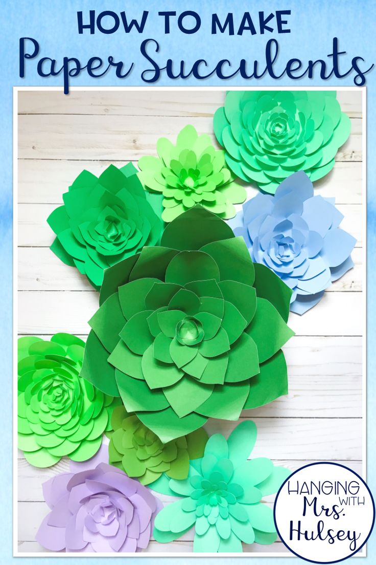 A simple DIY and guide to making 3 different styles of paper succulents (great for rustic or shiplap themed classrooms)