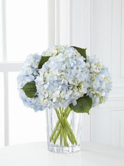 light blue hydrangeas are so beautiful and might be fun to incorporate with white flowers....would look beautiful with your blue tablecloths