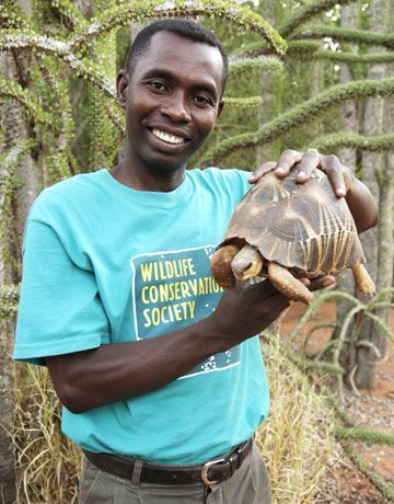 Radiated Tortoise -- Conservationists say there is still hope for the endangered turtles and tortoises of Madagascar, but not without swift action to crack down on illegal pet and food trade, stop habitat loss, and bolster wild populations with those born in zoos.
