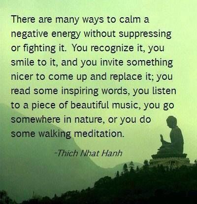 thich nhat hanh inspiration pinterest haus buddhism and thoughts. Black Bedroom Furniture Sets. Home Design Ideas