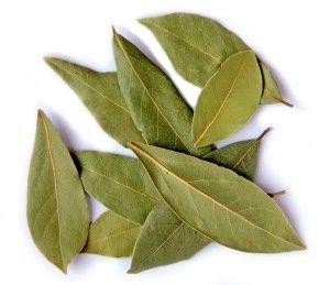 Bobkový list- očista kloubů