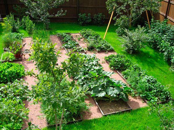 1. Борная кислота Очень нужна в дачном хозяйстве. Если загнивают плоды кабачков или цуккини, если томаты в теплице переживают стресс от жары, если не завязываются плоды у перца и баклажана, если мало…