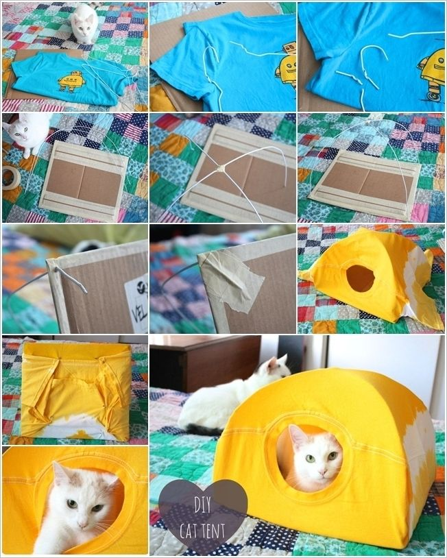 No sew cat tent made with a tee shirt, hangers and a piece of cardboard