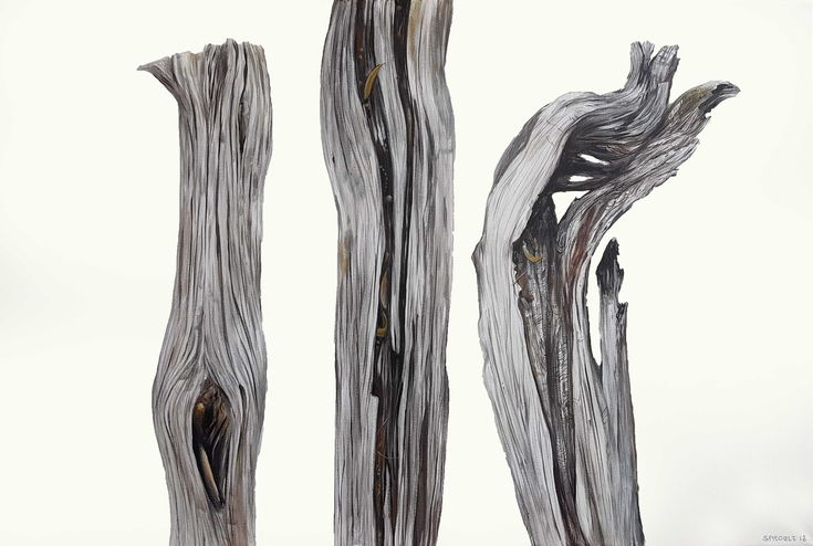 Variations on a theme, the beauty of grey, the elegance of wabi sabi. A story told in three parts with a twist at the end. #wabisabi #art #totems #nature #trees #bush #painting #grey