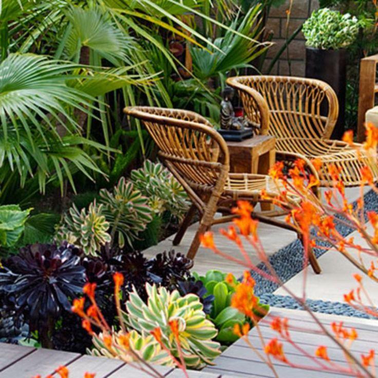 awesome 38 Beautiful Aeonium Succulents Plants for Garden Decoration https://wartaku.net/2017/06/13/38-beautiful-aeonium-succulents-plants-garden-decoration/