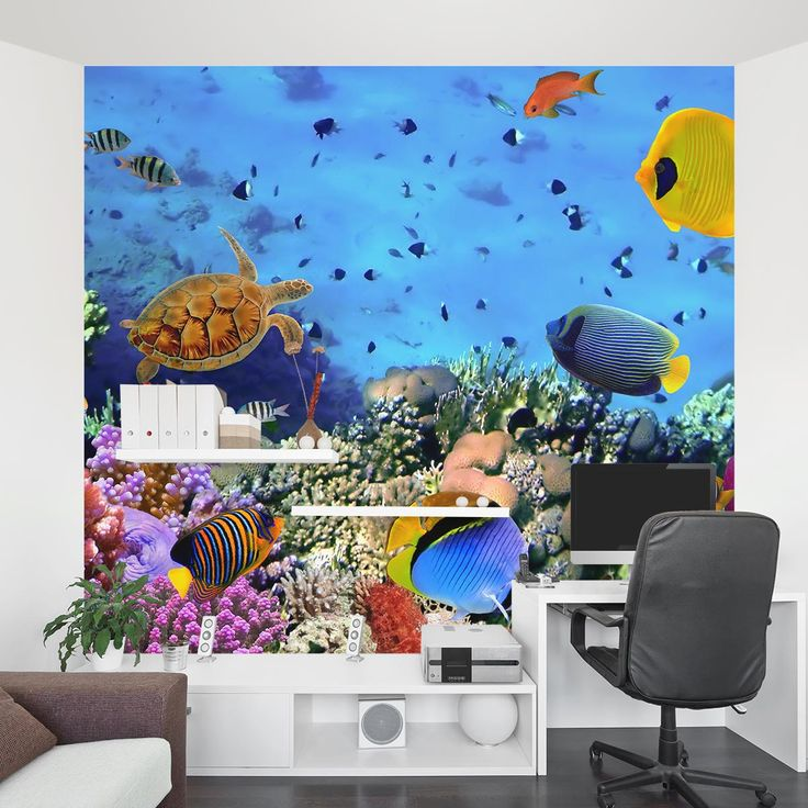 84 best images about wall murals on pinterest caribbean for Aquarium mural wallpaper