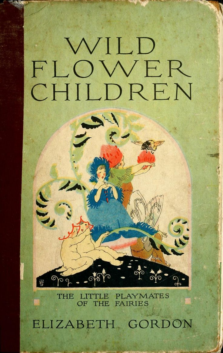 Wild flower children : the little playmates of ...
