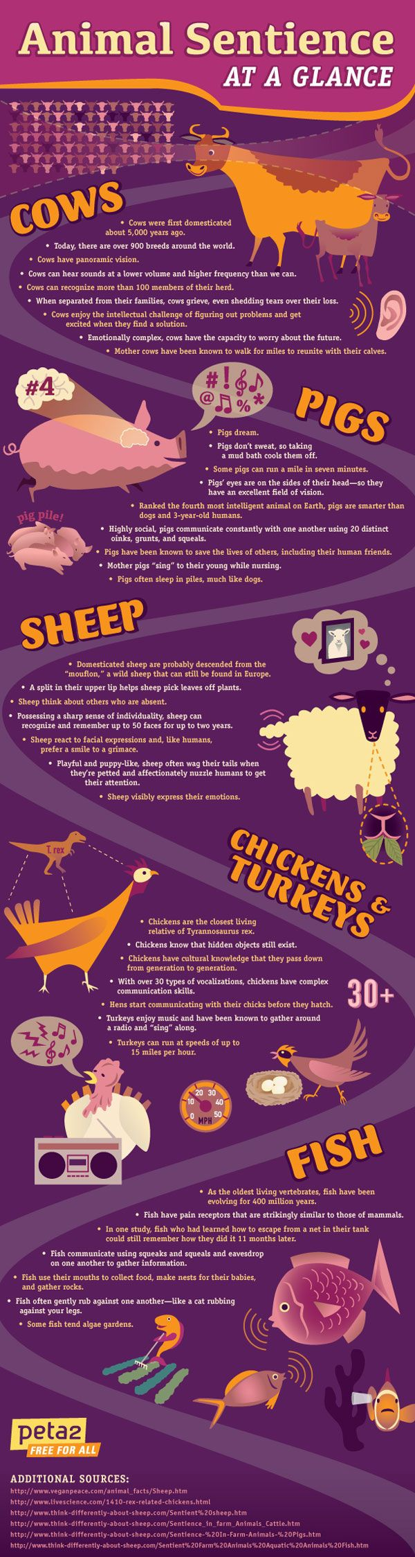Helpful Vegan Infographics | Lifestyle | peta2.com