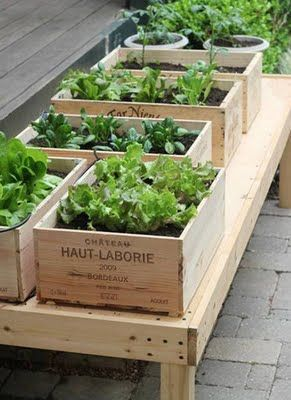 Love this idea!!! I could make some boxes and tables and then add a stencil on the side with the name of the plant - doesn't have to be a wine box :D Going to start planning this out right away!!