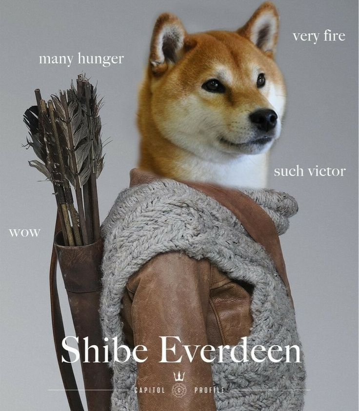Hunger Games + doge meme