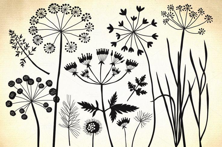 Herbs, dandelion, wild grasses by GrafikBoutique on Creative Market