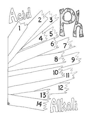 PH Worksheet Coloring Page Litmus Paper Chemistry PDF