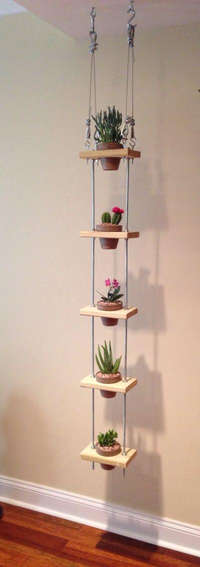 Vertical garden hanging in kitchen
