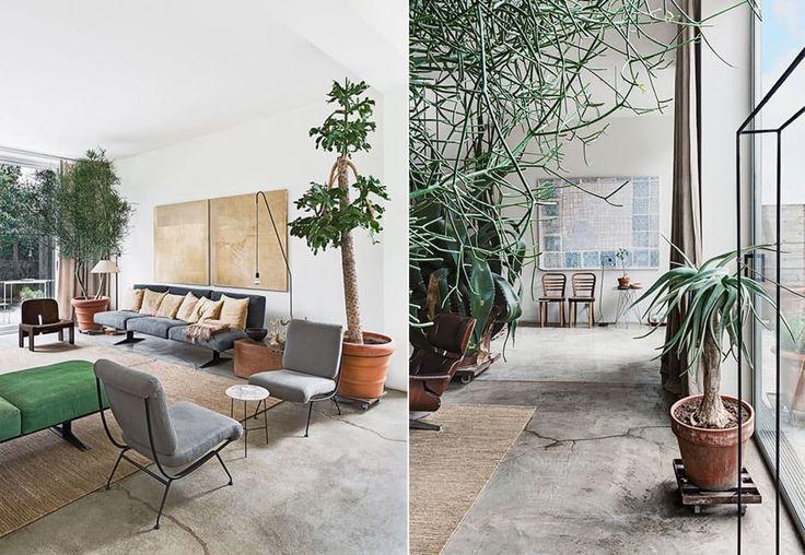 1. Du bruker planter som en viktig del av interiøret