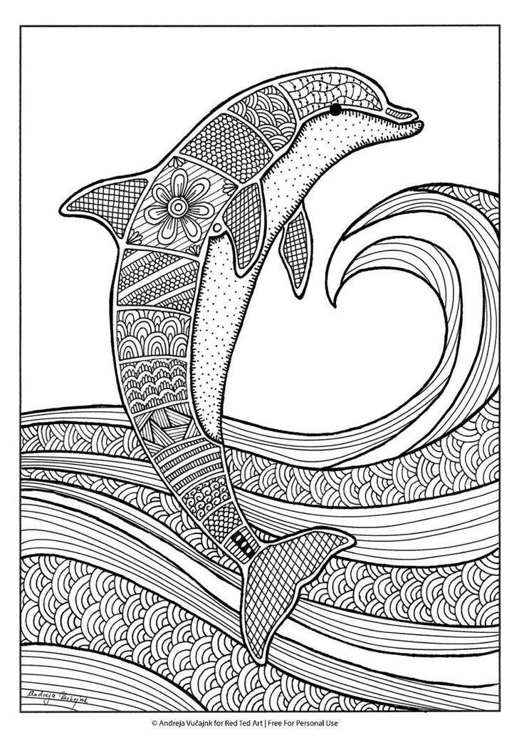 Free dolphin colouring page for grown-ups
