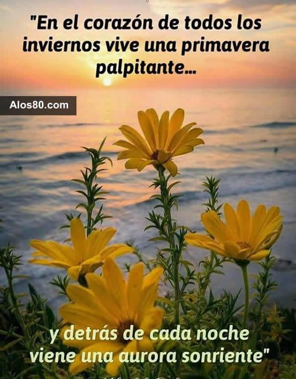 Frases Primavera Frases De Primavera Frases Bonitas Y Frases