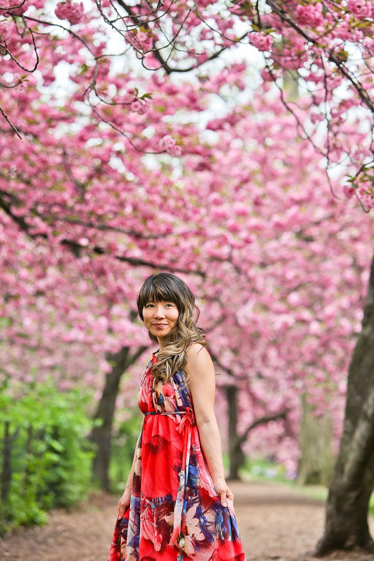 Best Places To See Cherry Blossoms In Nyc Nyc Places To See New York Winter