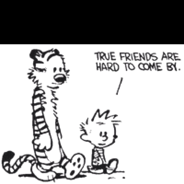 true friends, calvin and hobbes