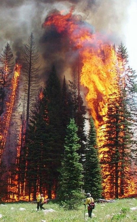 Idaho Crown Fire. What a shot! You can really appreciate all the hard work in trying to  put a fire like this out..........sooo massive!!