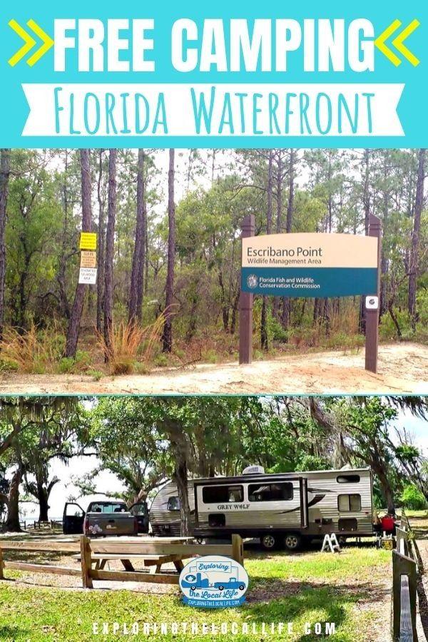 Free Florida Bayside Camping Exploring The Local Life In 2020 Florida Camping Free Camping Camping Destinations