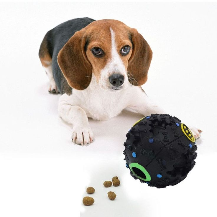 New Dog Toy! Treat Dispenser With Quack Sound! Great Chew Training Toy For Your Pup!!