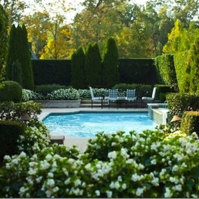 126 best Pool Privacy Ideas images on Pinterest   Pools ...