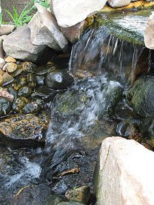 A Clear Pond; Garden Pond Information, Filtration, Cleaning, and Maintenance.