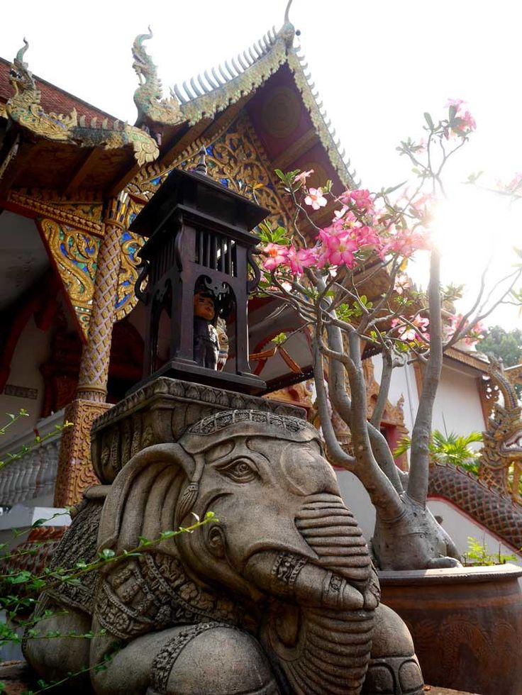 Wat Lam Chang, Chiang Mai, Thailand | Chiang Mai temples Chiang Mai top 5 temples | Laugh Travel Eat