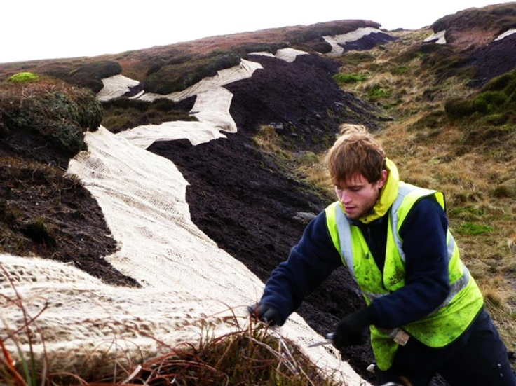 Our PR client environmental consultancy Wildscapes carrying out vital works on restoring habitats on the moors at Bleaklow, Derbyshire.