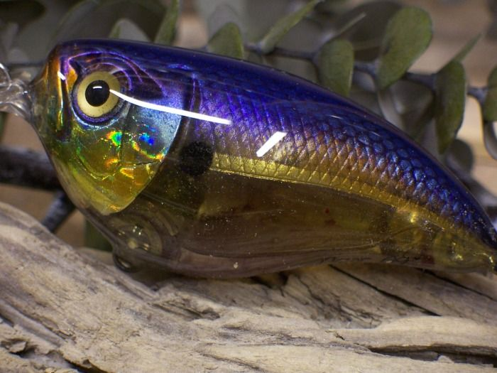 3180 best images about fishing lures baits on pinterest for Personalized fishing lures