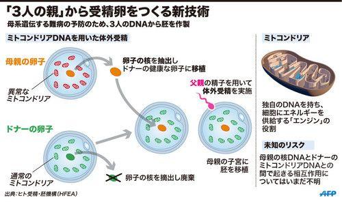 「3人のDNA持つ赤ちゃん誕生」をめぐる問題と懸念