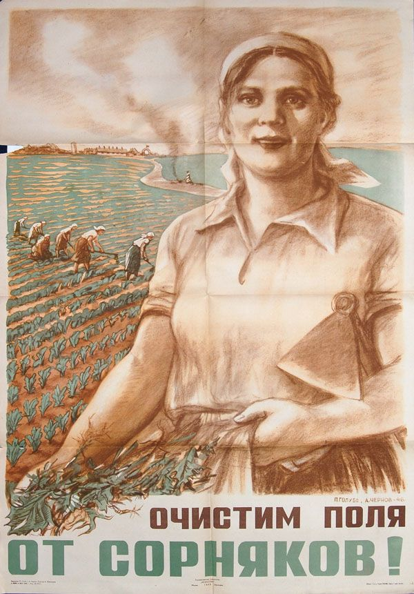 1946 clear the fields from the weeds