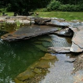 Natural Swimming Pool. - Click image to find more Gardening Pinterest pins