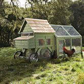 Chicken Coops at Williams Sonoma - Chickens must be cool!