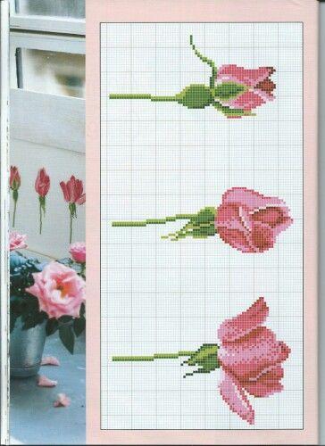Kanavice dergisi sayı 38 güller 1